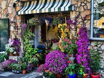 Florist in Positano - Florist in Positano