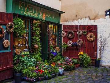 Květinářství v Praze - Pěkná květinářství v Praze