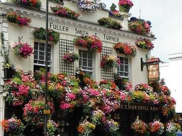 The Churchill Arms in London - The Churchill Arms in London