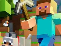 Minecraft - Ett omslag av spelet Minecraft som representerar en av dess karaktärer