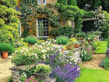 English cottage with garden - English cottage with garden