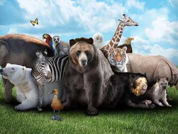 animali selvaggi - il puzzle verrà realizzato su animali selvatici e conterà quanti animali ci sono nel puzzle
