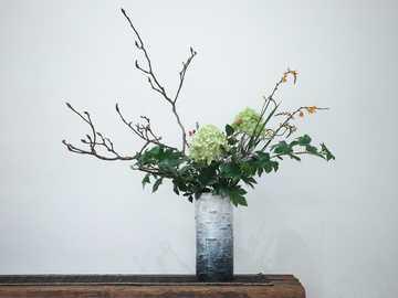 五 玄 土   树 花 器 —— 桦 - planta verde en jarrón de cerámica gris.