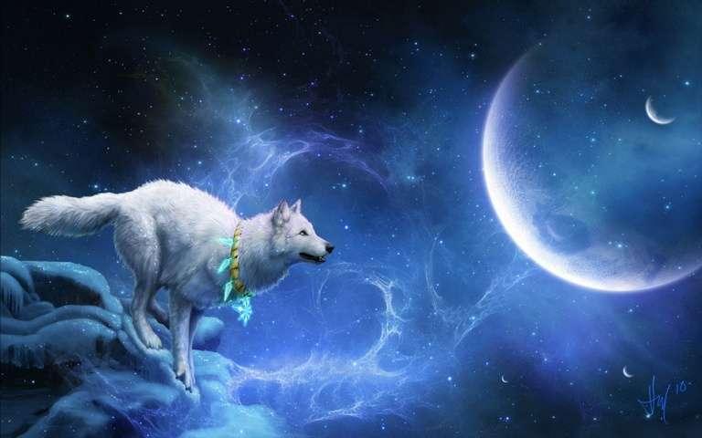 Lobo de noche - foto que muestra al lobo atraído por la luna (14×9)