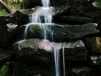 Easeless - close view of waterfall between forest.