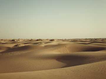 closeup photo of desert - Jaisalmer, Rajasthan, India. Jaisalmer, Rajasthan, India