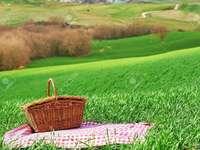 Zi pe teren - Zi însorită de câmp