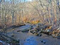 Ridley Creek - spring awakens at Readley Creek