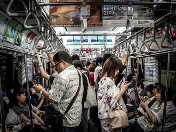 people inside train - During an overnight layover in Tokyo, I decided to take the train to Shibuya to explore the area and