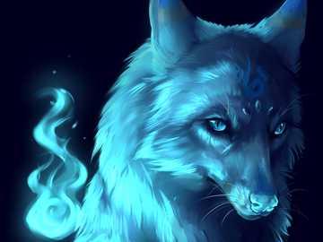 beau loup - un magnifique loup de feu d'eau