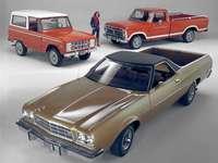 1973 Ford Bronco - Ce sont tous des modèles Ford de 1973.