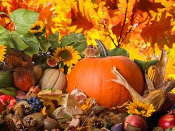 Autumn Harvest - Autumn Harvest-Pumpkin .....
