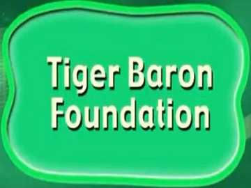 t is for tiger baron foundation - lmnopqrstuvwxyzlmnop