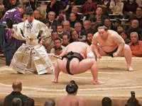 walka sumo - walka sumo w Japonii