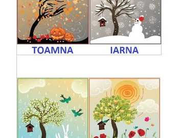 The Tree of the Seasons - An interesting puzzle about the seasons