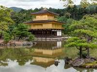 Giardino giapponese - una pagoda in un giardino giapponese