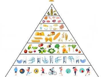 food pyramid - A new food pyramid that shows children how to eat