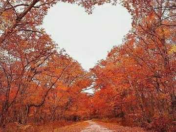Herbstherz am Himmel - Herbstherz am Himmel