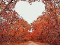 φθινοπωρινή καρδιά στον ουρανό - φθινοπωρινή καρδιά στον ουρανό