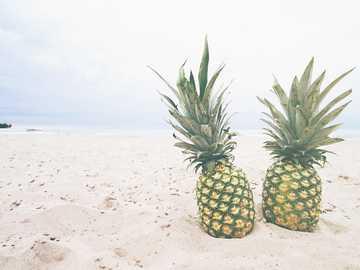 due frutti di ananas sulla sabbia - Dai un'occhiata a https://pineapplesupply.co per più ananas !. Port Stanley, Canada
