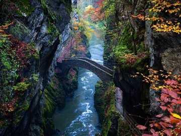 bridge over stream with autumn leaves - bridge over stream with autumn leaves