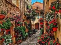 Spello bekannt für seine Blumen in den Gassen
