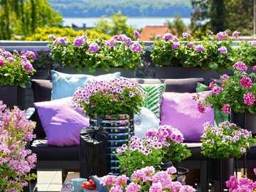 Květiny na terase - M ...................