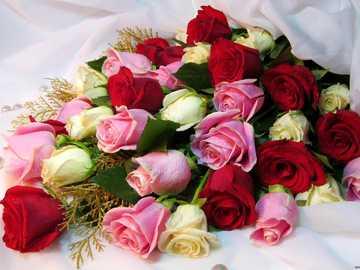 Růže...... - M ....................