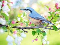 een vogel op een takje