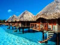 Seychely - prázdninové domy na vodě