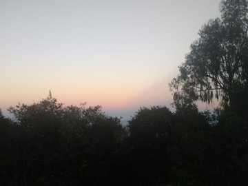 Цветно небе - Цветен облачен пейзаж в гората