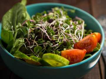 bowl of vegetable salad - Garden-fresh salad in farmhouse style with fresh microgreens and tomatoes.