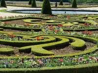 ogród w Wersalu - formalny ogród w Wersalu
