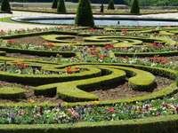 grădina din Versailles - grădina formală din Versailles