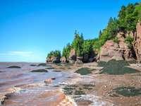 Νερά σοκολάτας του Fundy Bay