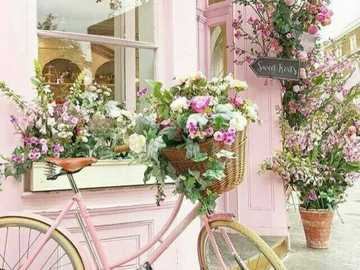 passeggiata primaverile - giro in bicicletta con i fiori