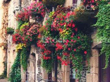balconi - balconi fioriti nel vicolo