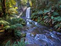 Blue stream with a waterfall - waterfalls between grass and trees at daytime. Hopetoun Falls, Beech Forest, Australia