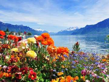 Svizzera. - Puzzle di paesaggio.