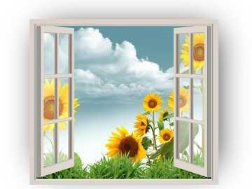 Vista de janela - janela aberta para a paisagem
