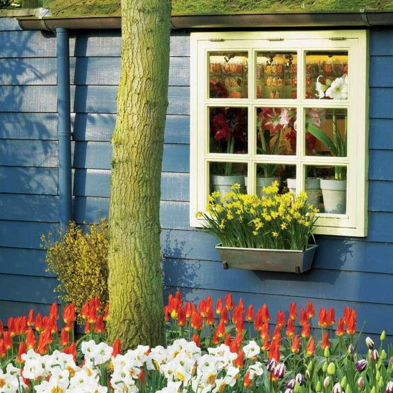 Virágokkal díszített kék faház (10×10)