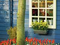 Μπλε ξύλινο σπίτι διακοσμημένο με λουλούδια