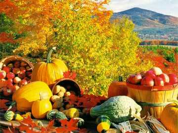 Autumn landscape - The puzzle presents elements specific to the autumn season