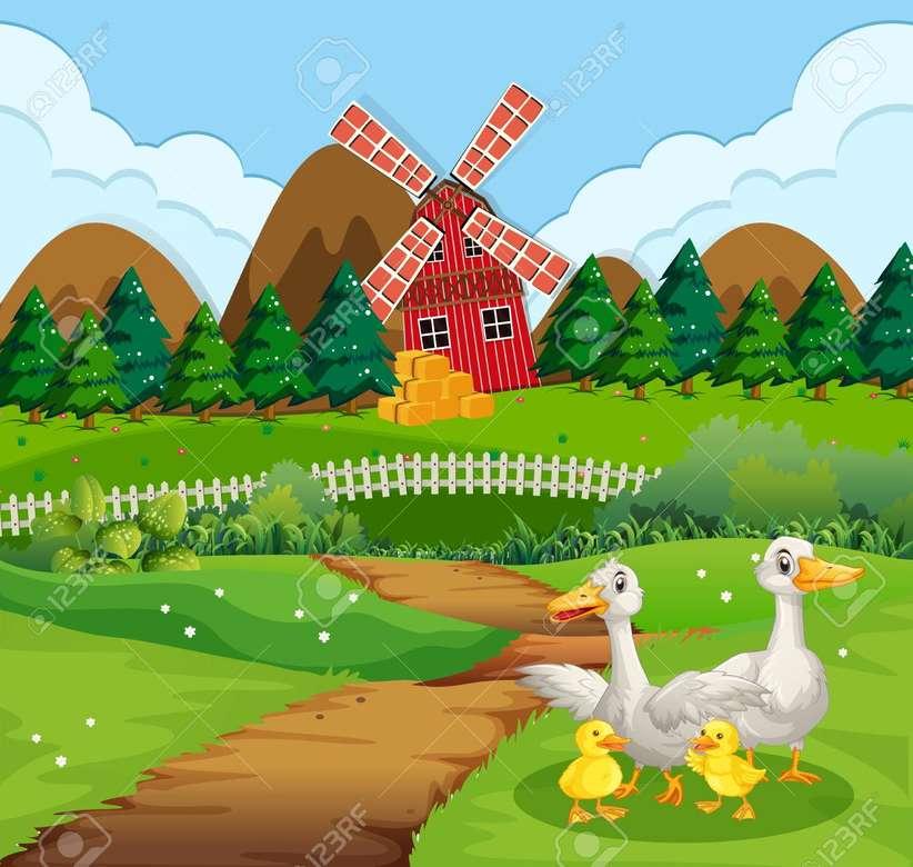 Windmühle. Enten Puzzle