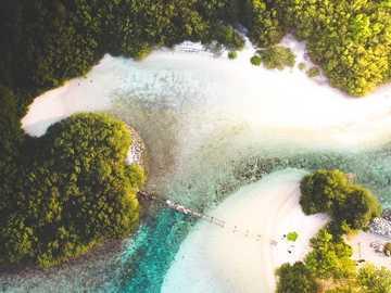 fotografia dall'alto di uno specchio d'acqua vicino agli alberi - Un piccolo ponte che conduce al famoso spot per il surf da coke a Thulusdhoo, Maldive. Coca Cola, Th