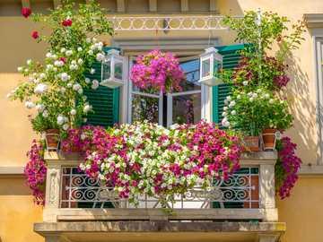 Flores na varanda - M ......................