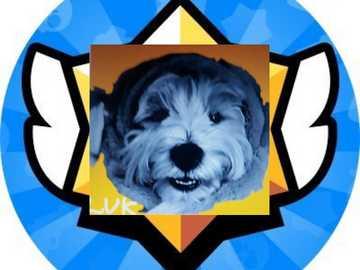 Lukwest puzzle - Én vagyok Lukwest. Használd velem a rejtvényt, és kövess engem a samequizy.pl oldalon.