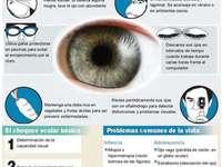 Augenpflege - Eye Care_Infographic