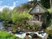Old mill in the Black Forest - Old mill in the Black Forest