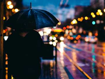 Чадър Калифорния St дъжд - човек, който се разхожда по улицата, докато държи черен